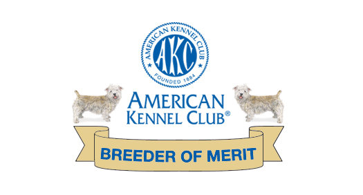 AKC Breeder of Merit- Glen of Imaal Terriers