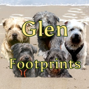 Glen Footprints