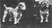 Glens - 1934