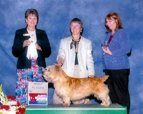 Albany Kennel Club 2004 - Scoobie - GROUP 4