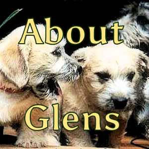 About Glens