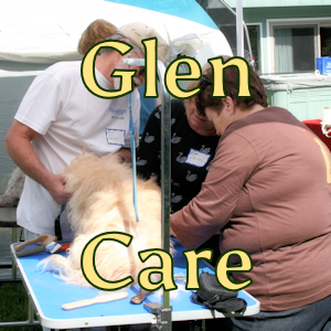 Glen Care