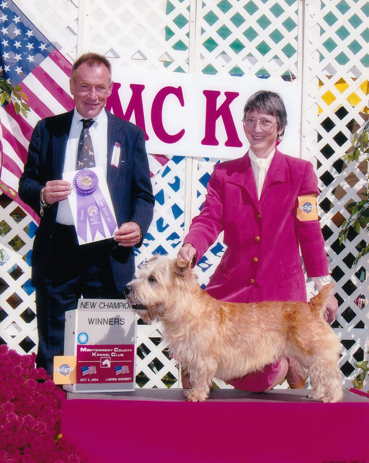 CH Ballyfoyle Scoobie, first AKC Champion male, Glen of Imaal Terrier