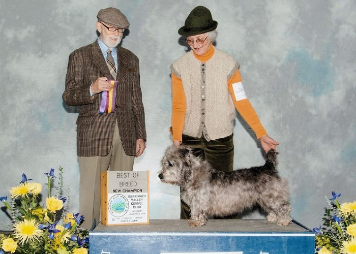 Diligence Best of Breed Merrimack Valley Kennel Club 010618